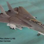 F-14A Tomcat Plus (1)