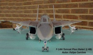 F-14A Tomcat Plus (2)