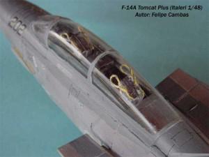 F-14A Tomcat Plus (5)