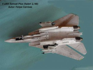 F-14A Tomcat Plus (6)