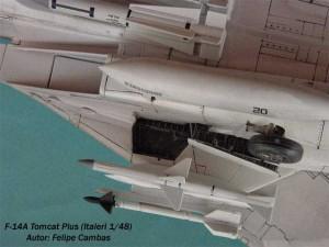 F-14A Tomcat Plus (7)