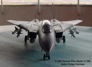 F-14A Tomcat Plus (8)