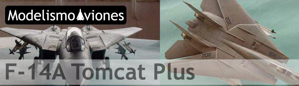 F-14A-Tomcat-plus