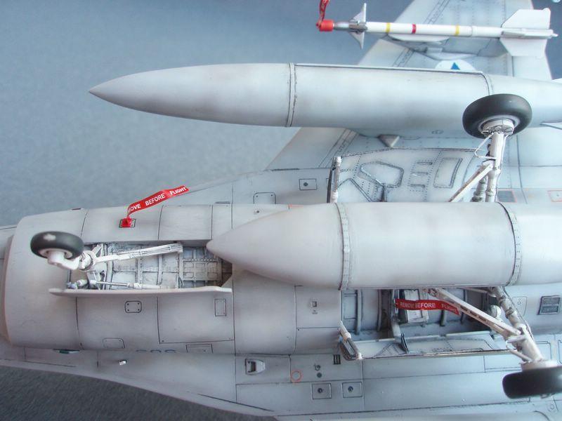 Hasegawa F-16 Falcon Agressor 08