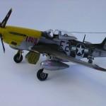 P-51D Mustang Hasegawa 1