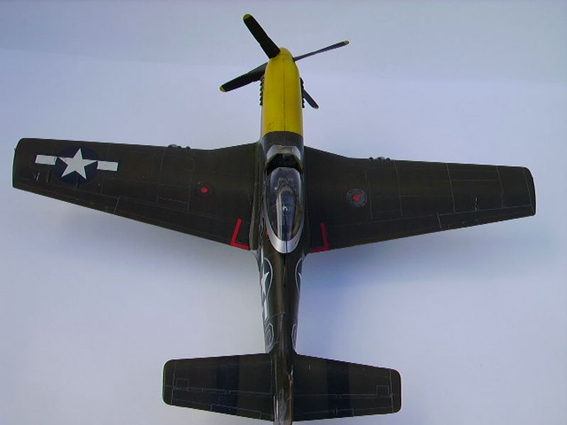 P-51D Mustang Hasegawa 6