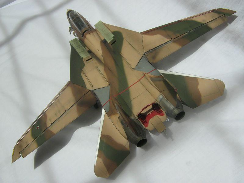 Hasegawa F-14 Tomcat 1