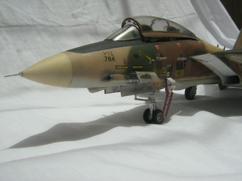 Hasegawa F-14 Tomcat 2