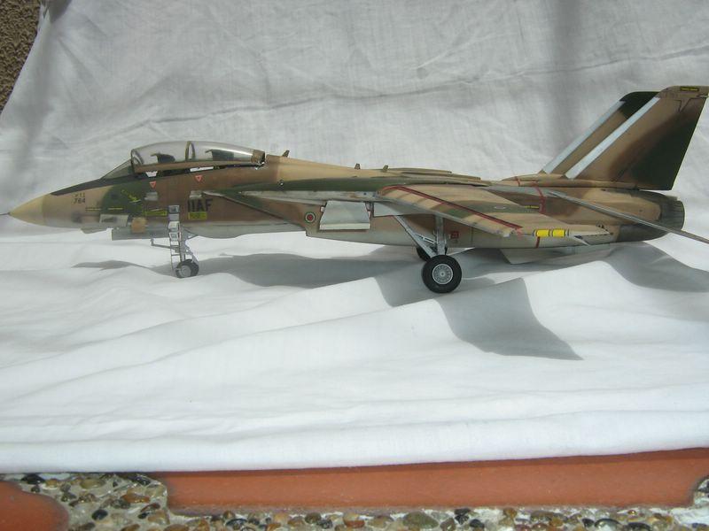 Hasegawa F-14 Tomcat 3