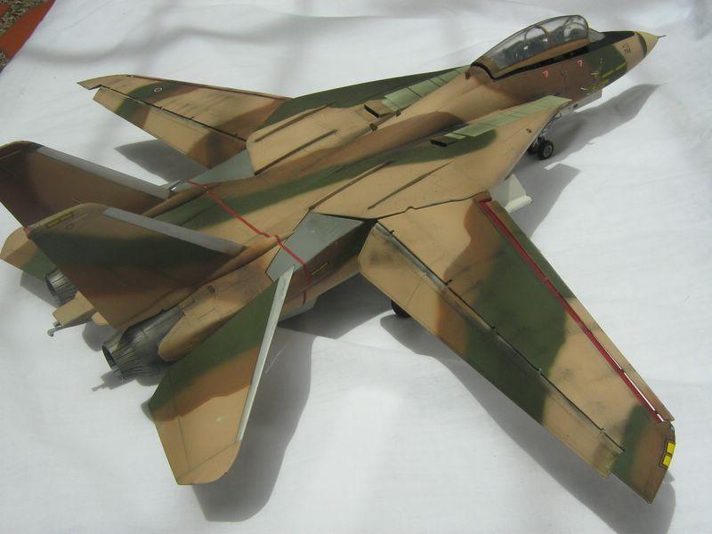 Hasegawa F-14 Tomcat 5