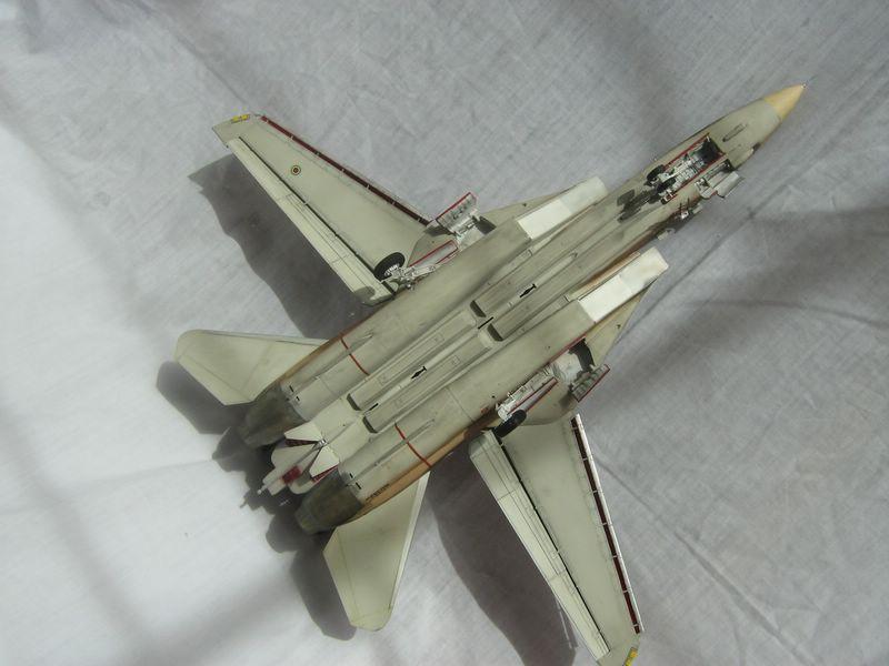 Hasegawa F-14 Tomcat 6