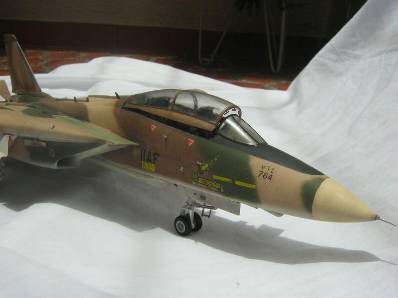Hasegawa F-14 Tomcat 7