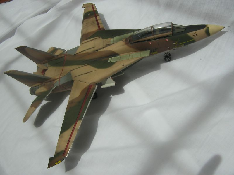 Hasegawa F-14 Tomcat 8