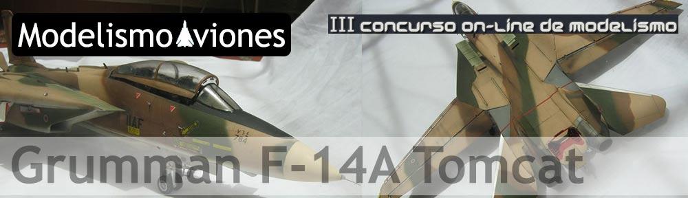 Hasegawa F-14 Tomcat