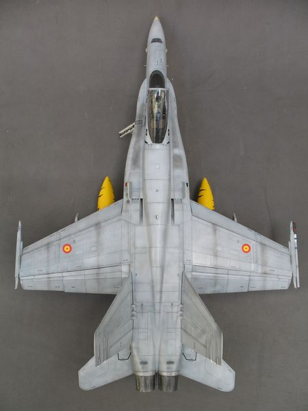 Maqueta F-18 de Hasegawa Tiger Meet 04