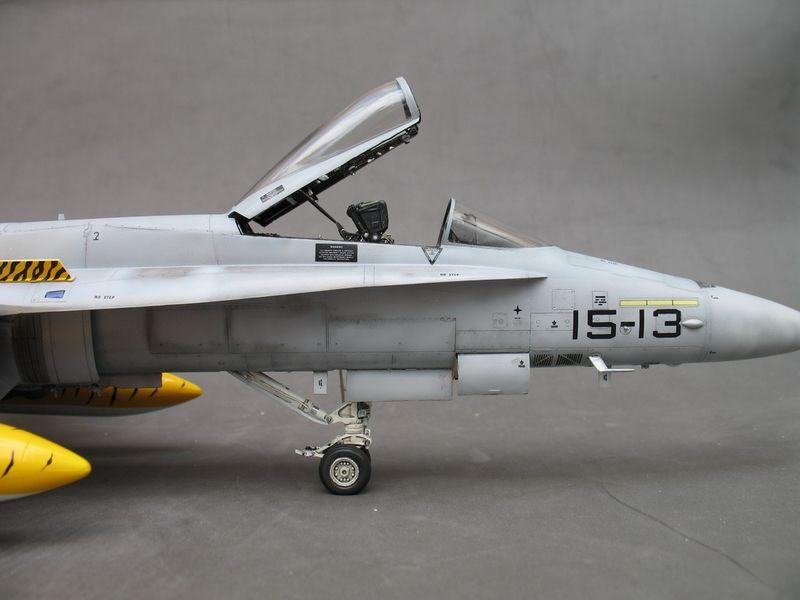 Maqueta F-18 Tiger Meet de Hasegawa 05