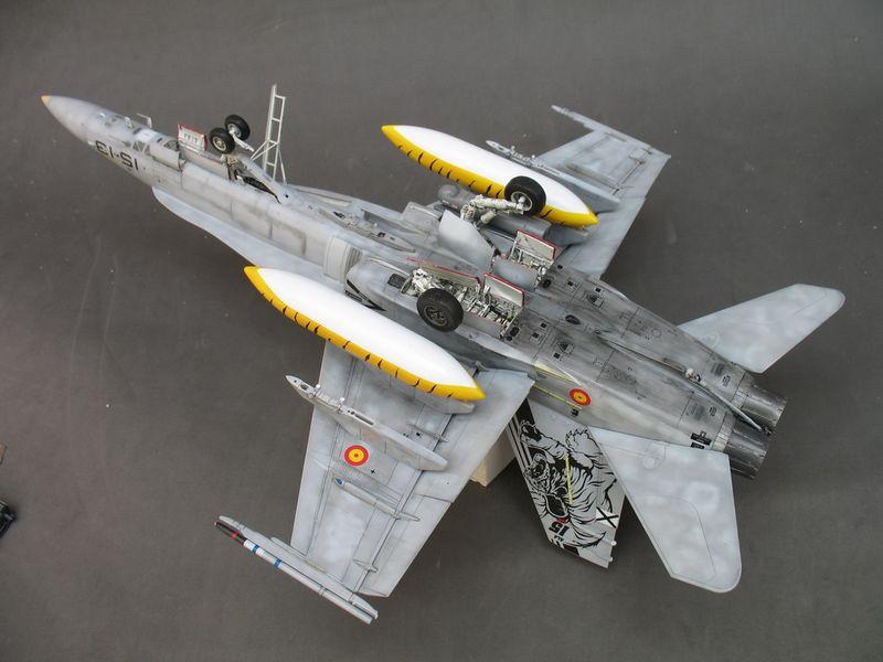 Maqueta F-18 Hasegawa Tiger  Meet  08