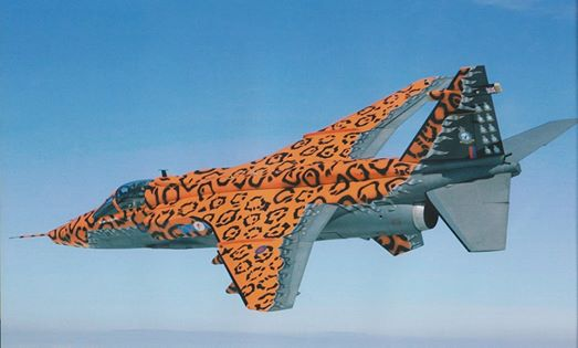 maqueta jaguar Big cat