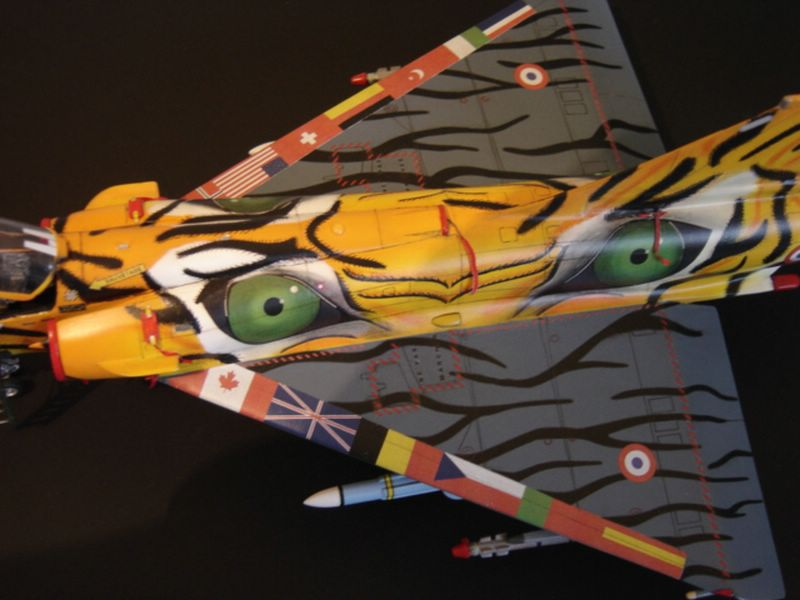 Maqueta Italeri Mirage 2000 Tiger Meet 07