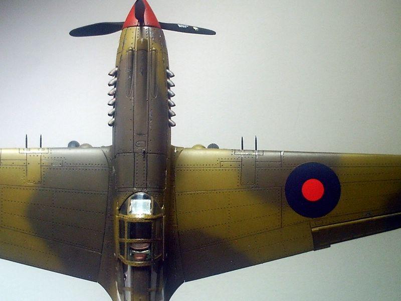 Maqueta P-40 Trumpeter 04