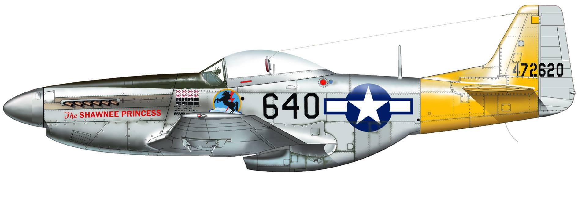 P-51 Pacific Aces de Italeri 04