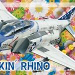 Nuevo set F-4 Phantom Rockin' Rino de Eduard a 1/48